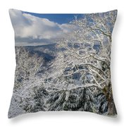Snow Scene At Berry Summit Throw Pillow
