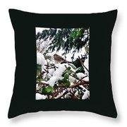 Snow Scene Of Little Bird Perched Throw Pillow