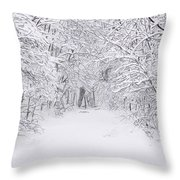 Snow Scene Tree Branches Throw Pillow