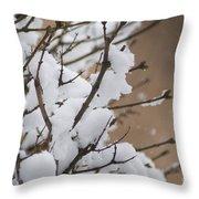 Snow Shower Throw Pillow