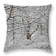 Snow White Forest Throw Pillow