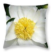 Snow White Peony Throw Pillow