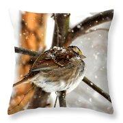 Snowball Throw Pillow