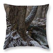 Snowbark Throw Pillow