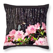 Snowberry Clearwing II- Sphinx Moth Throw Pillow