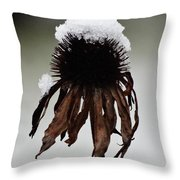 Snowcapped Coneflower Throw Pillow