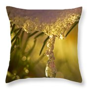 Snowdrop Crystal Throw Pillow by Sharon Talson