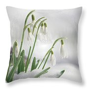 Snowdrops On Ice Throw Pillow