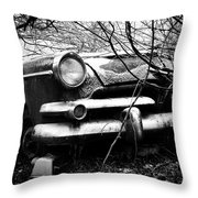 Snowed In Throw Pillow