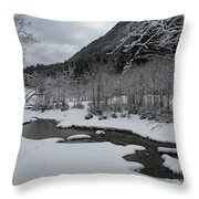 Snowed Under Valley Throw Pillow