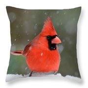 Snowflake Cardinal Throw Pillow