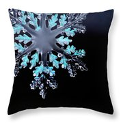 Snowflake In Window 20471 Throw Pillow