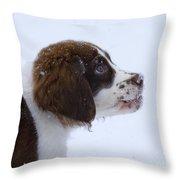 Snowflake Wonder Throw Pillow by Mike  Dawson