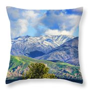 Snowing In Orange County Throw Pillow