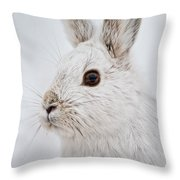 Snowshoe Hare Pictures 128 Throw Pillow