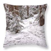 Snowshoe Trail Throw Pillow