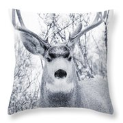 Snowstorm Deer Throw Pillow