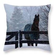Snowstorm Horse Throw Pillow