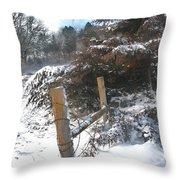 Snowstorm The Day After Throw Pillow