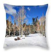 Snowy Aspen Grove Throw Pillow