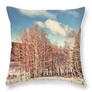 Snowy Aspens  Throw Pillow