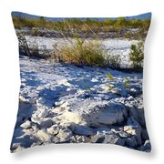 Snowy Beach Throw Pillow
