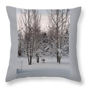 Snowy Bird Bath Throw Pillow