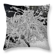 Snowy Branches In Darkness Throw Pillow