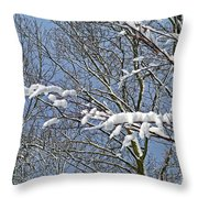 Snowy Branches With Blue Sky Throw Pillow