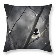 Snowy Chickadee Throw Pillow by Shane Holsclaw