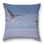 Snowy Coming In For Landing Throw Pillow