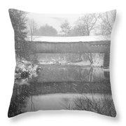 Snowy Crossing Throw Pillow