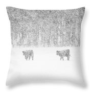 Snowy Day Highland Cattle Throw Pillow