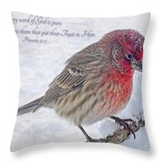 Snowy Day Housefinch With Verse  Throw Pillow