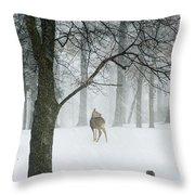 Snowy Deer Throw Pillow