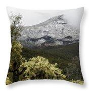 Snowy Desert Mountain Throw Pillow