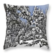 Snowy Dreams  Throw Pillow
