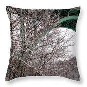 Snowy Drive Throw Pillow