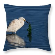 Snowy Egret Catches Sushi And Seaweed Throw Pillow