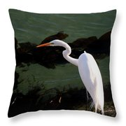 Great Egret Monterey Bay California  By Pat Hathaway Throw Pillow