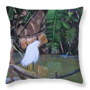 Snowy Egret In Costa Rica Throw Pillow