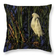 Snowy Egret In The Reeds Throw Pillow
