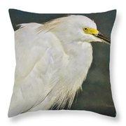 Snowy Egret Portrait Throw Pillow