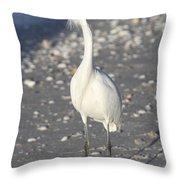 Snowy Egret Pose Throw Pillow