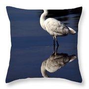 Snowy Egret Reflection  Throw Pillow