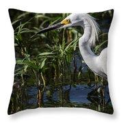 Snowy Egret Stalking Throw Pillow