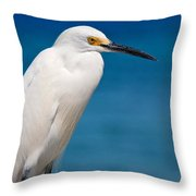 Snowy Egret Takin' Five Throw Pillow