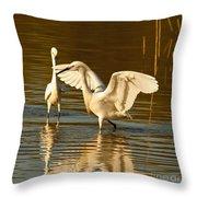 Snowy Egret Wingspan Throw Pillow
