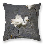 Snowy Egret With Fish No.2 Throw Pillow