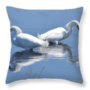 Snowy Egrets With Reflection Throw Pillow